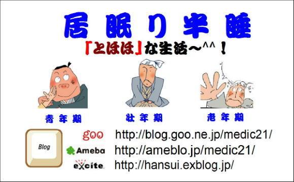 c0328479_16292753.jpg