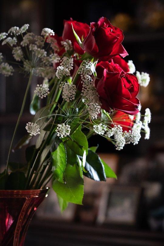 真紅の薔薇_d0353489_00201464.jpg