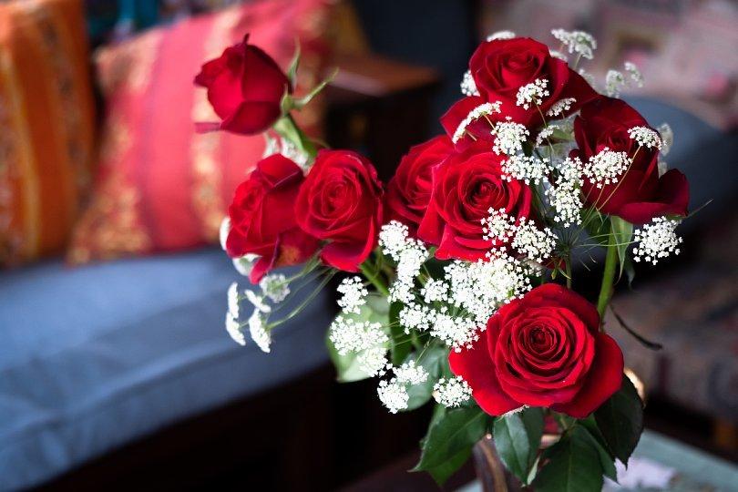 真紅の薔薇_d0353489_00210344.jpg