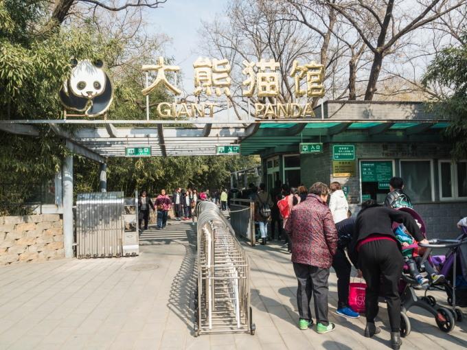 2019北京・万里の長城vol.3~北京動物園パンダと南鑼鼓巷~_f0276498_23534422.jpg