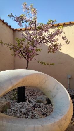 めぐみの湯の生け花と露天風呂の桜_c0141652_17383103.jpg
