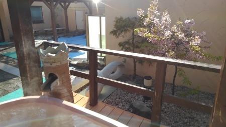 めぐみの湯の生け花と露天風呂の桜_c0141652_17383852.jpg