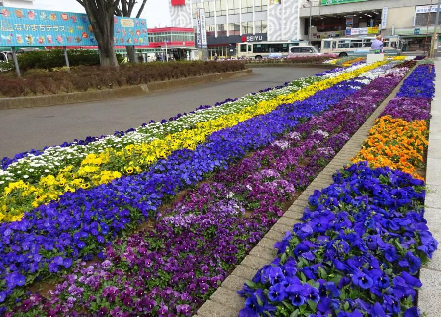 東京ドロンパ・ぶるべーのモニュメント完成_f0059673_18380055.jpg