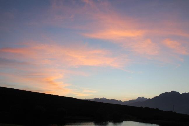 <南アフリカワイン旅行記>収穫真っ只中のステレンボッシュ。_b0016474_15310747.jpg