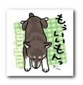 2002年9月のシバツレ漫画_b0057675_21081102.png