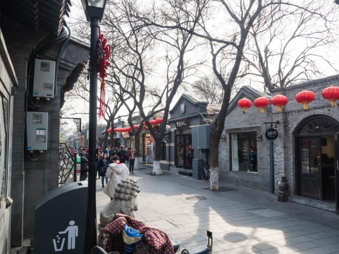 2019北京・万里の長城vol.3~北京動物園パンダと南鑼鼓巷~_f0276498_00180323.jpg