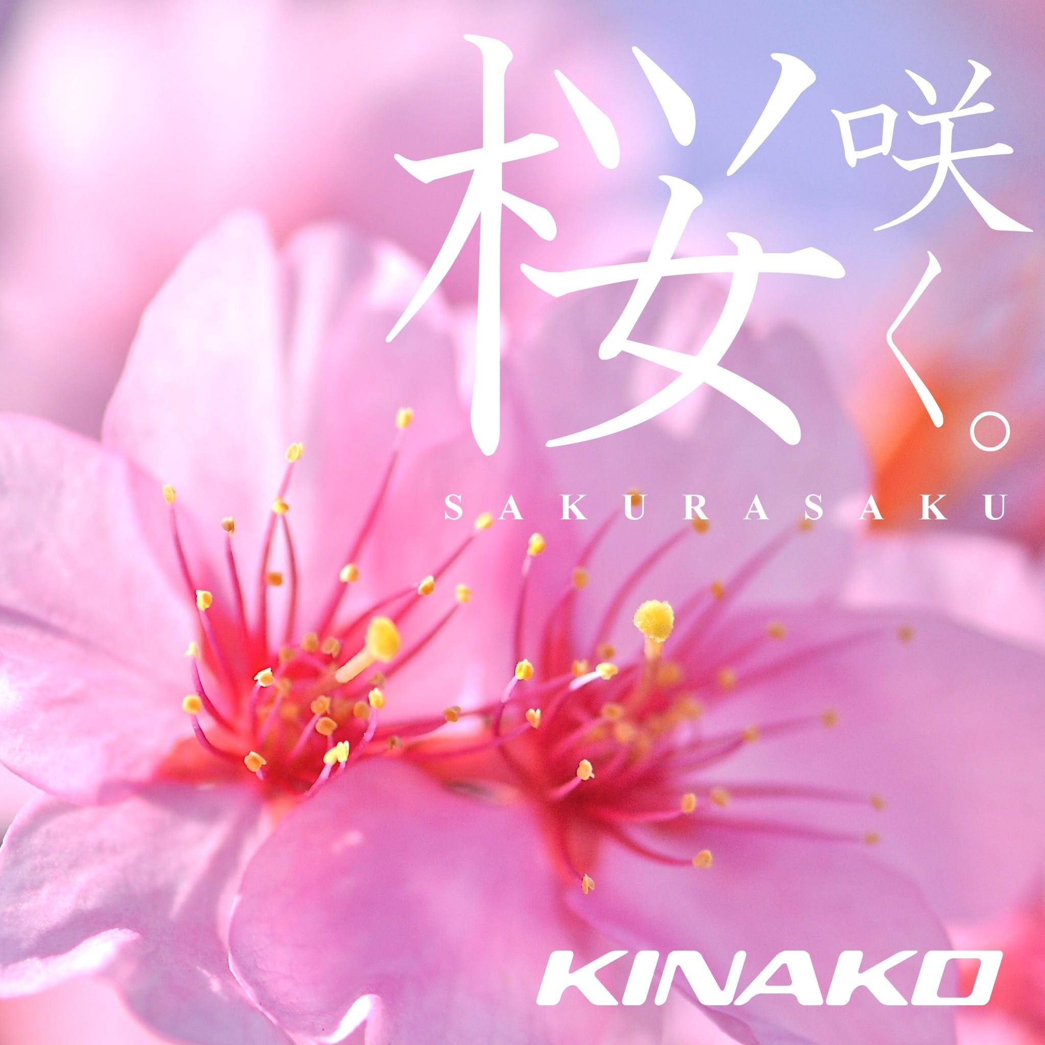 【キナさんぽ】 春のイントロ_f0115311_22340832.jpeg
