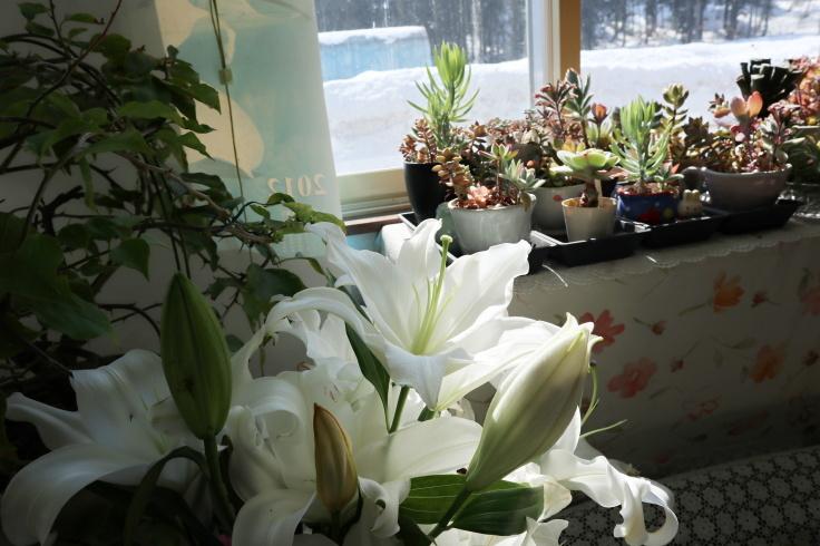 春分の日_f0067514_10432090.jpg