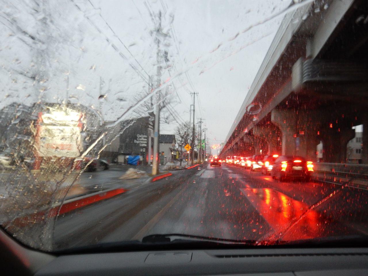 雨になりました_c0025115_22163684.jpg