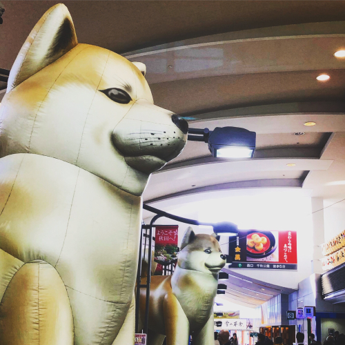 故郷秋田へ。by Instagram_d0336521_10330900.jpg