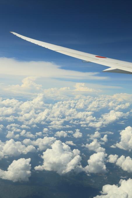 機内にて。マレーシア旅行  - 21 -_f0348831_11445458.jpg