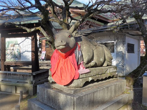 京都・北野天満宮へ行く。_f0232060_11203100.jpg