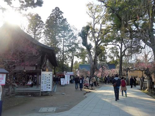 京都・北野天満宮へ行く。_f0232060_11244211.jpg