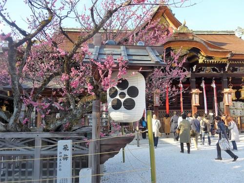 京都・北野天満宮へ行く。_f0232060_1125405.jpg