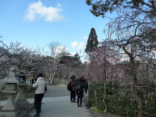 京都・北野天満宮へ行く。_f0232060_11323576.jpg