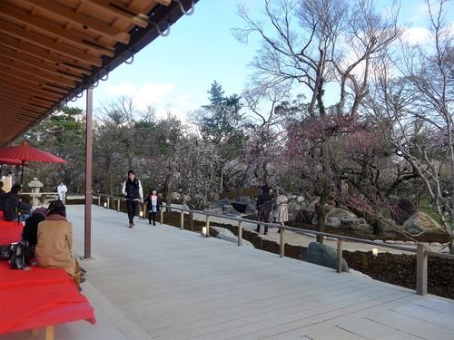 京都・北野天満宮へ行く。_f0232060_1133253.jpg