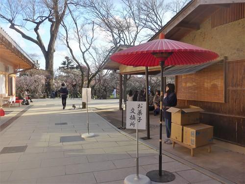 京都・北野天満宮へ行く。_f0232060_11354381.jpg