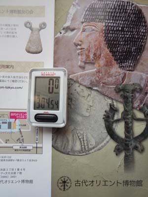 ぐるっとパスNo.5 古代オリエント博「南インドの巨石文化」まで見たこと_f0211178_18102688.jpg