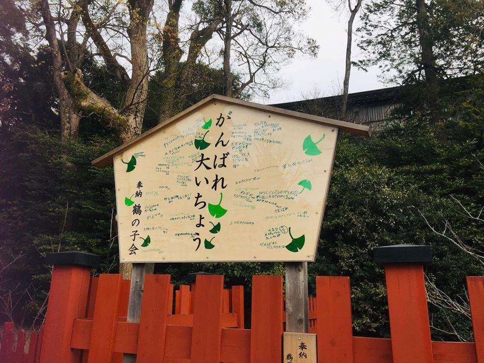 着物で憧れの鎌倉を歩く!!_a0126418_22282688.jpg
