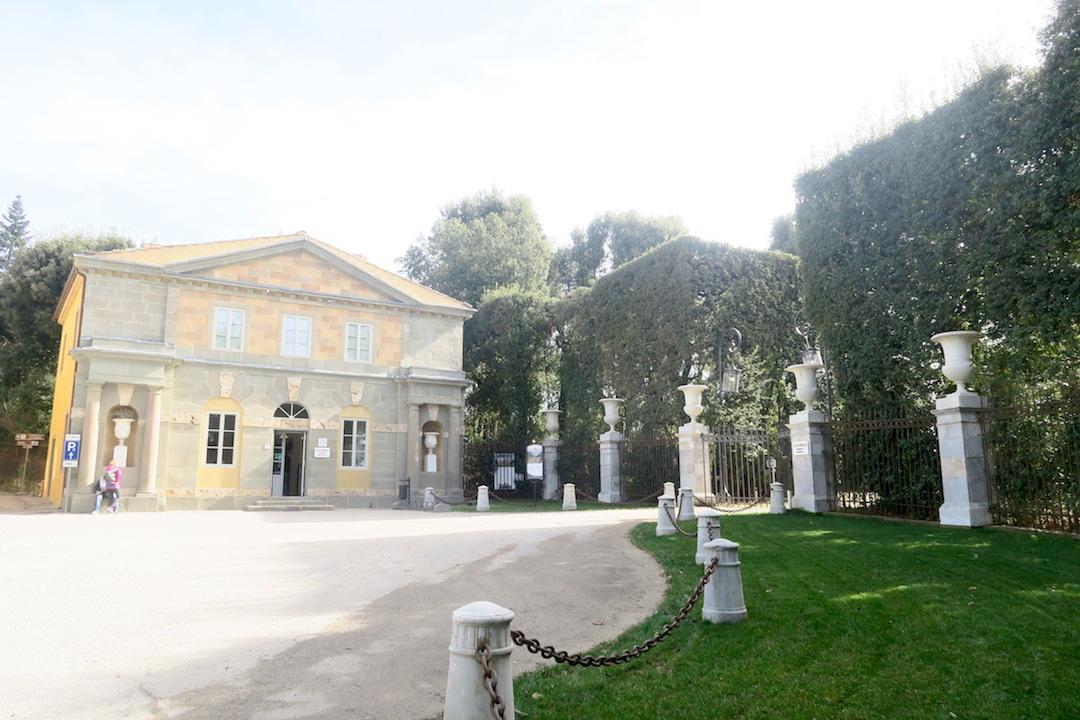 美しい椿の小道 庭園の景、ルッカ マルリア邸_f0234936_740985.jpg