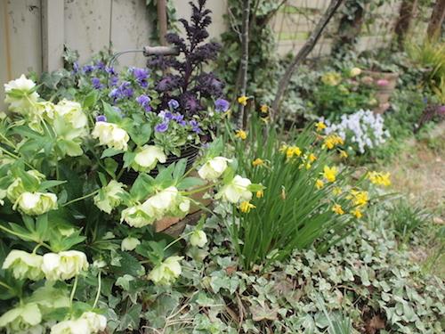 ゆるっと春。_a0335560_19292739.jpg