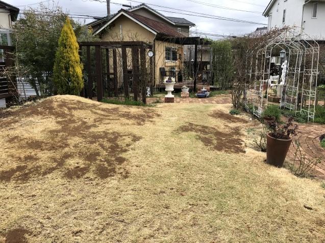3月の庭_a0243064_17131519.jpg