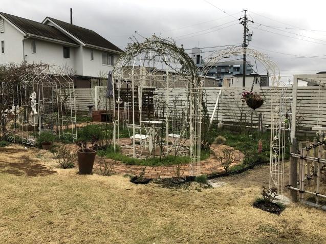 3月の庭_a0243064_17233912.jpg