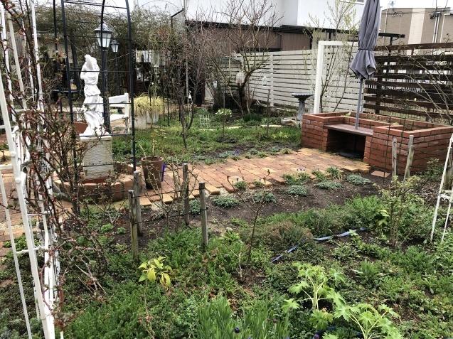 3月の庭_a0243064_17363235.jpg