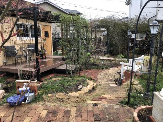3月の庭_a0243064_17432578.jpg