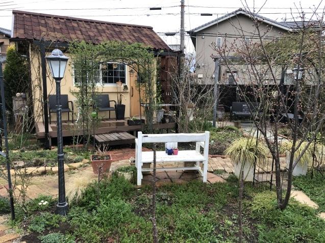 3月の庭_a0243064_17433983.jpg