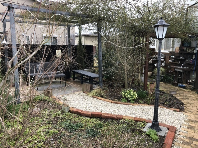 3月の庭_a0243064_18043625.jpg