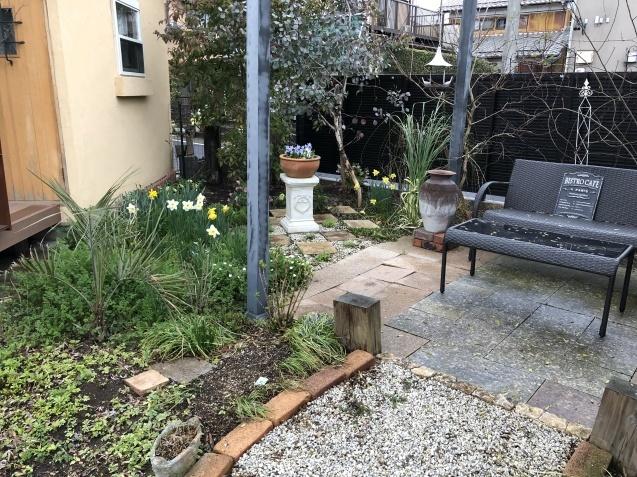 3月の庭_a0243064_18175672.jpg