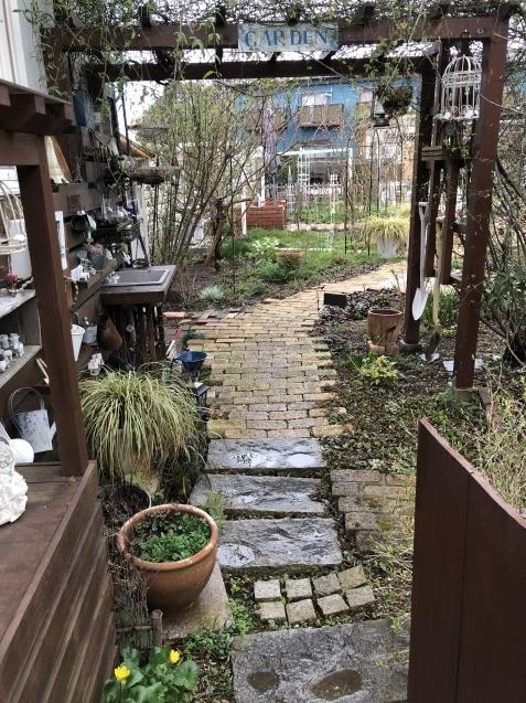 3月の庭_a0243064_18244416.jpg