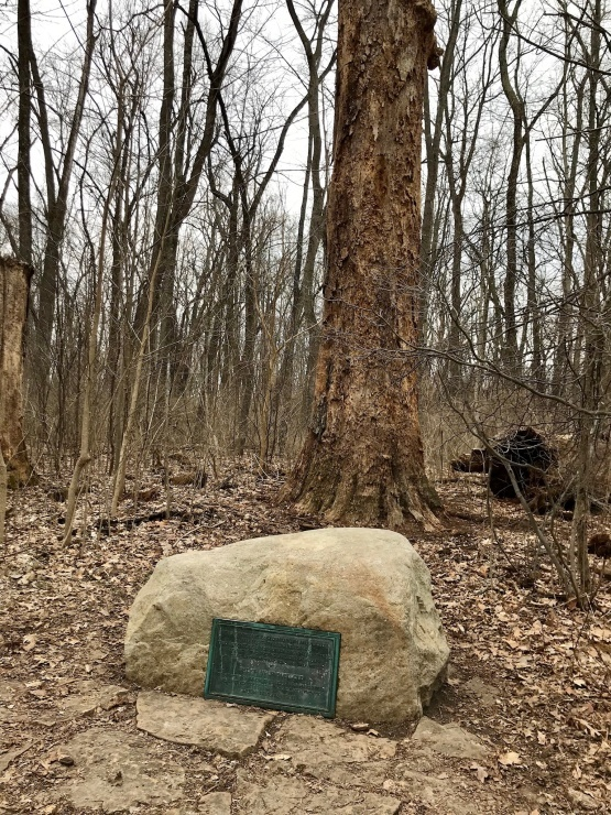 グレンヘレン  ヘレンの森へ_c0100195_22401302.jpg