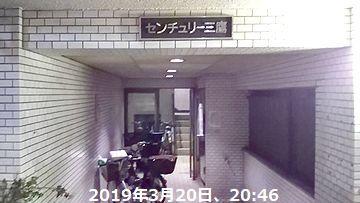 d0051601_17122151.jpg