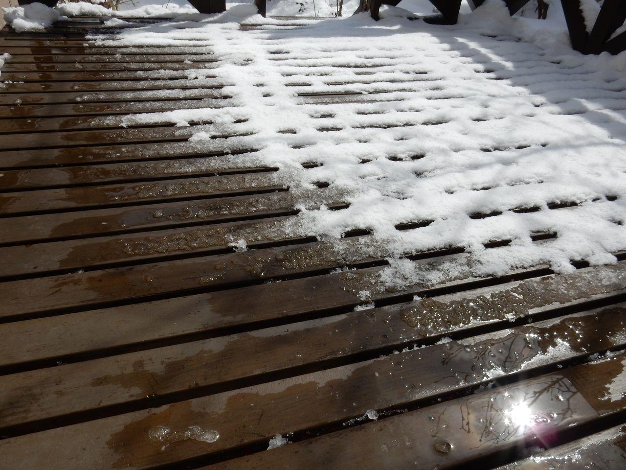 根雪の終日はキャンセルされました_c0025115_22024403.jpg