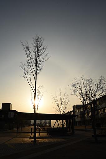 オガール広場でミニピクニック2019.03.21_b0259218_00034754.jpg