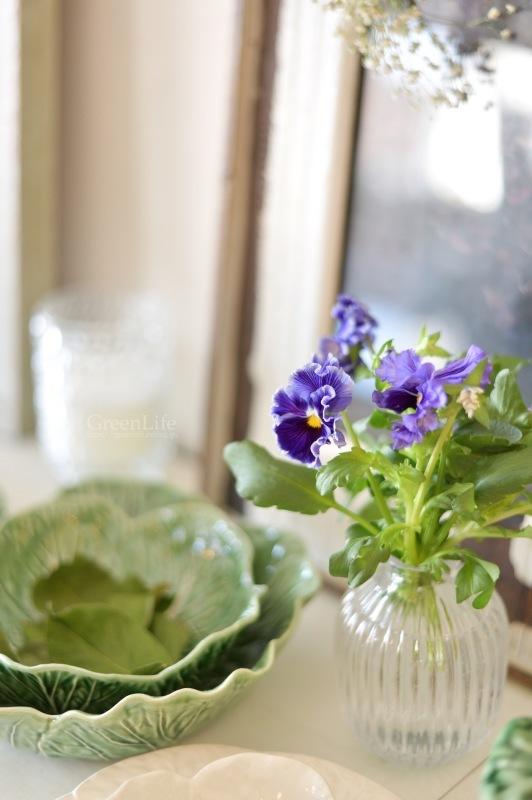 キャベツのお皿に春のお花を♪_f0321522_10434666.jpg