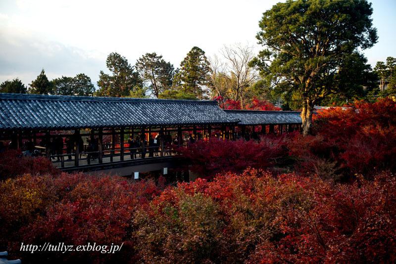 京都の秋 2018(18)_d0108132_14383169.jpg