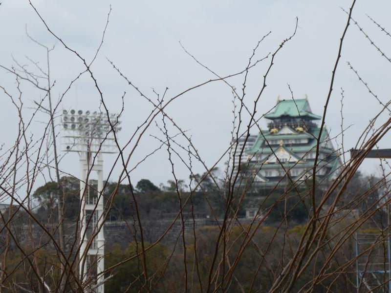 大阪城に孫と行ってきました_c0108460_18400867.jpg