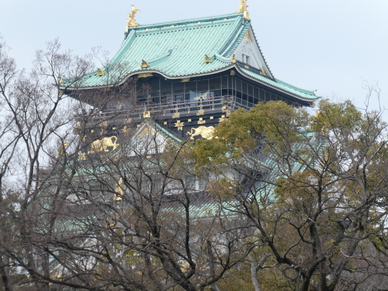 大阪城に孫と行ってきました_c0108460_18405699.jpg