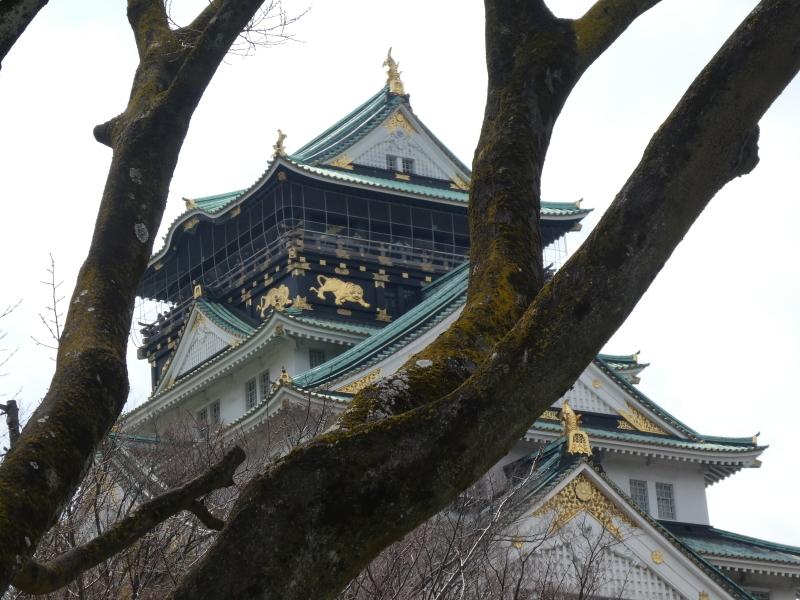 大阪城に孫と行ってきました_c0108460_18525188.jpg