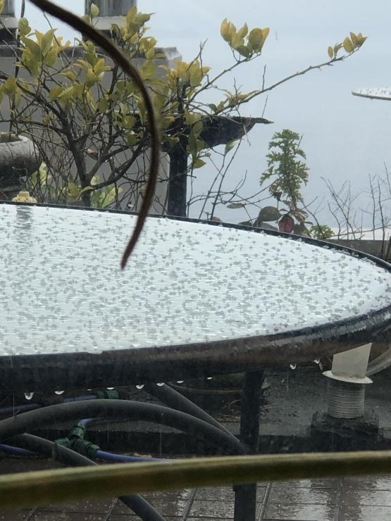 2019年3月23日 雪です箱根予報通り_b0098584_22452968.jpeg