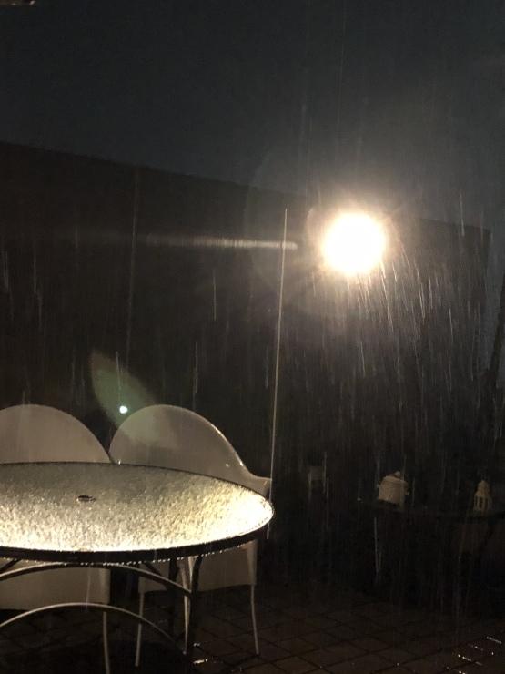 2019年3月23日 雪です箱根予報通り_b0098584_22463422.jpeg