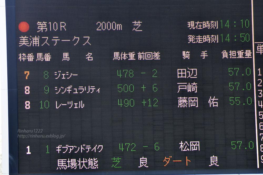 2019.3.24 中山競馬場☆美浦ステークス☆ジェシー【Jesse】_f0250322_21353176.jpg