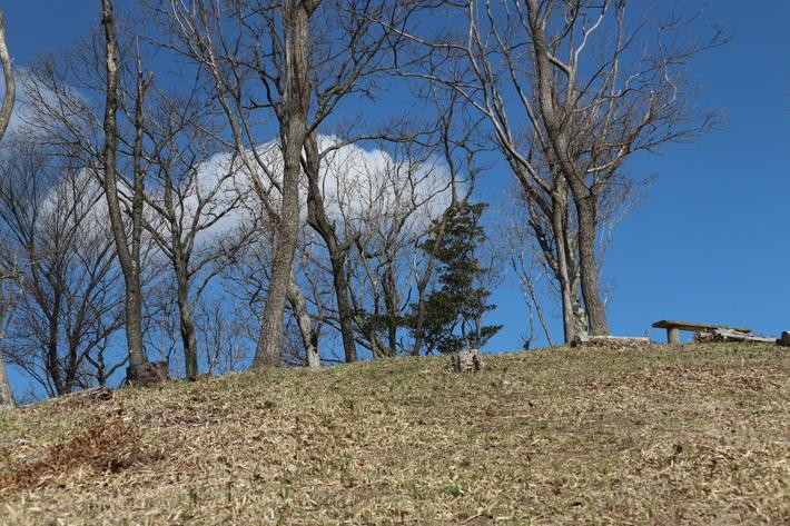 里山歩きで今季お初の春蘭を愛でる!_e0272335_162154.jpg