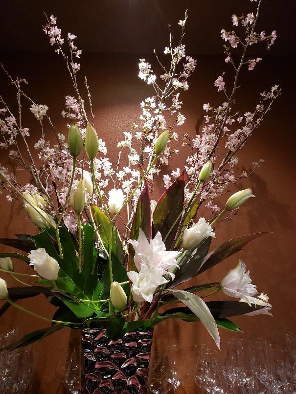 けいおう桜_c0119937_01234118.jpg