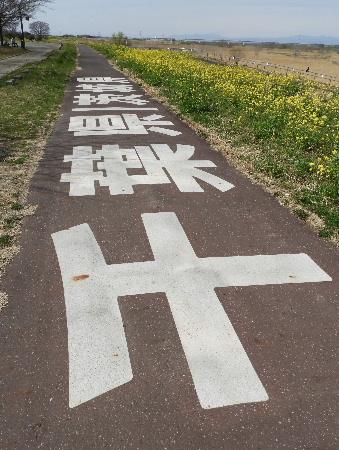 江戸川-利根運河-利根川-権現堂-見沼代用水_e0172950_8204099.jpg