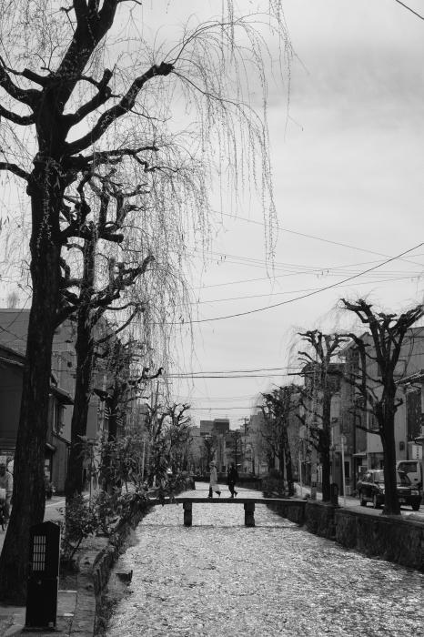 京都ふたり旅_d0349265_18491303.jpg