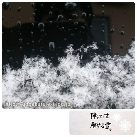 【English】雪解け_e0132084_22253417.jpg